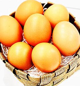 どうまい卵